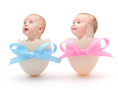 babies in eggs