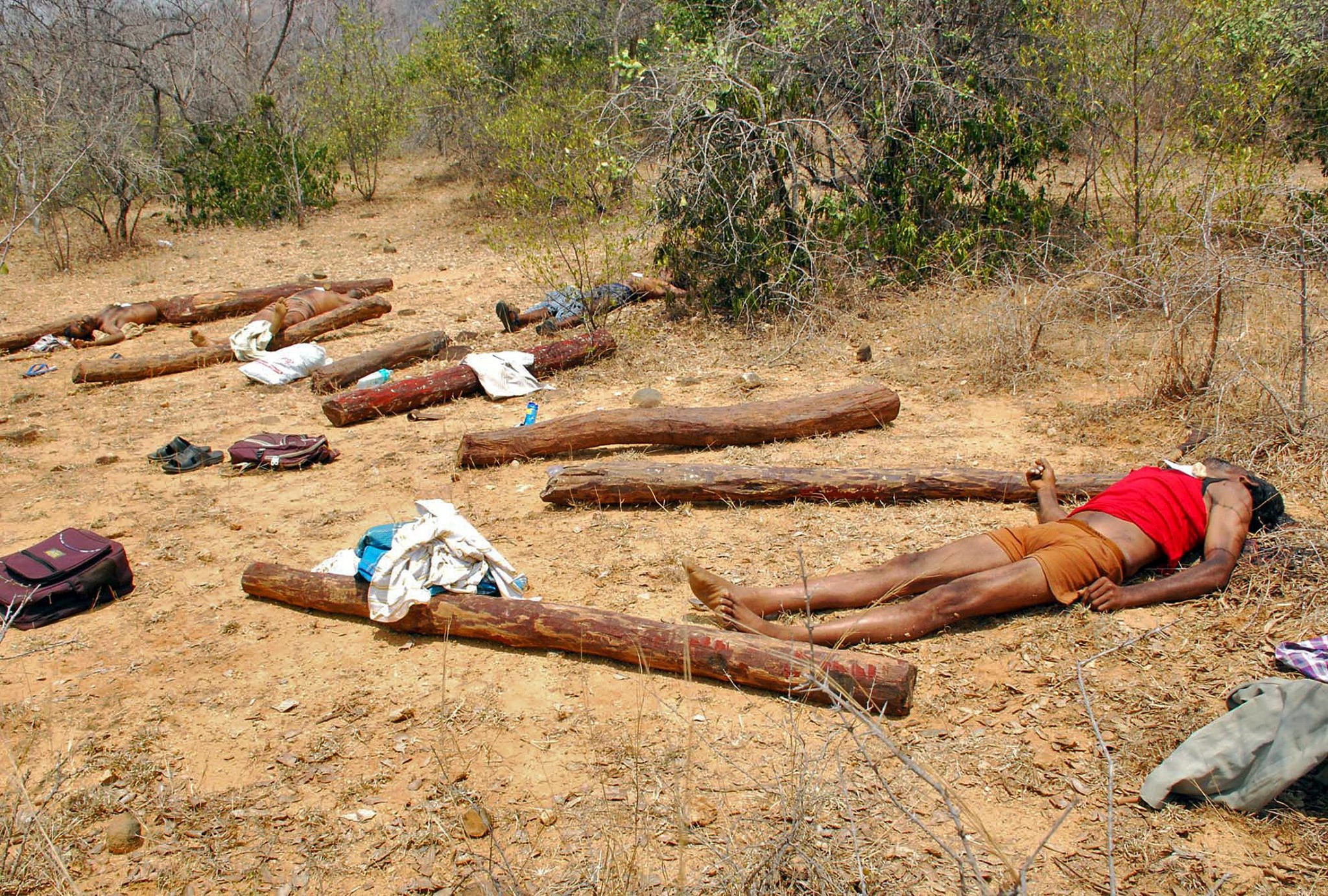 Bodies of people, who Indian police claim are suspected sandalwood smugglers killed during an operation by Indian security personnel, lie in the forest area of Chitoor district