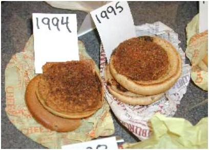 McdonaldsX Mcdonalds burger